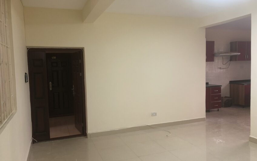 Lovely 2 Bedroom Spacious Apartment To Rent With DSQ